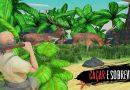 Novo jogo de Sobrevivencia – Raft Survival: Sobrevivência na ilha – Simulator